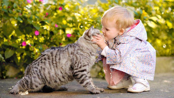 Dítě ubližuje zvířatům