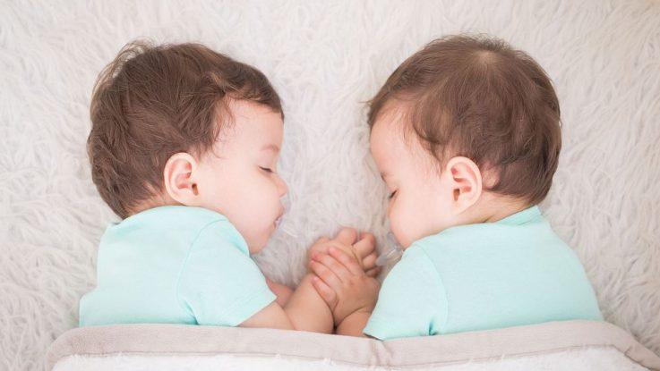 výchova dvojčat