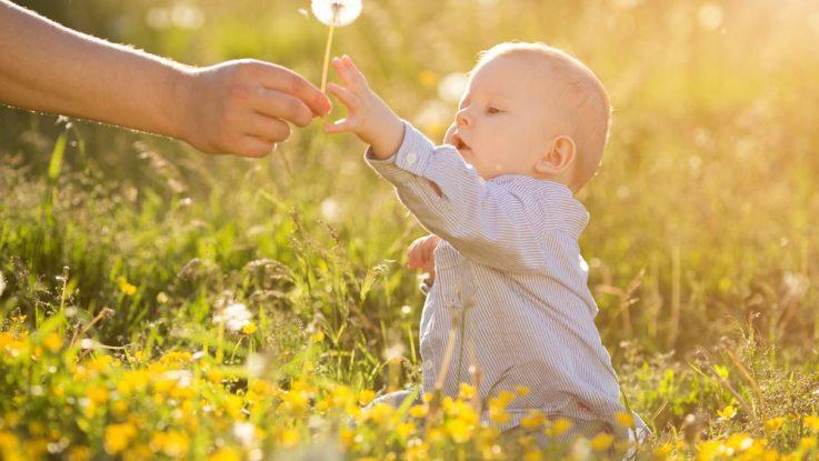 Alergie na pyl u kojenců