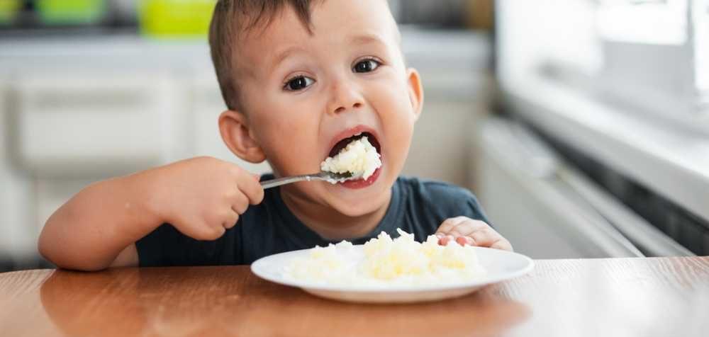 Těžké kovy v dětské stravě