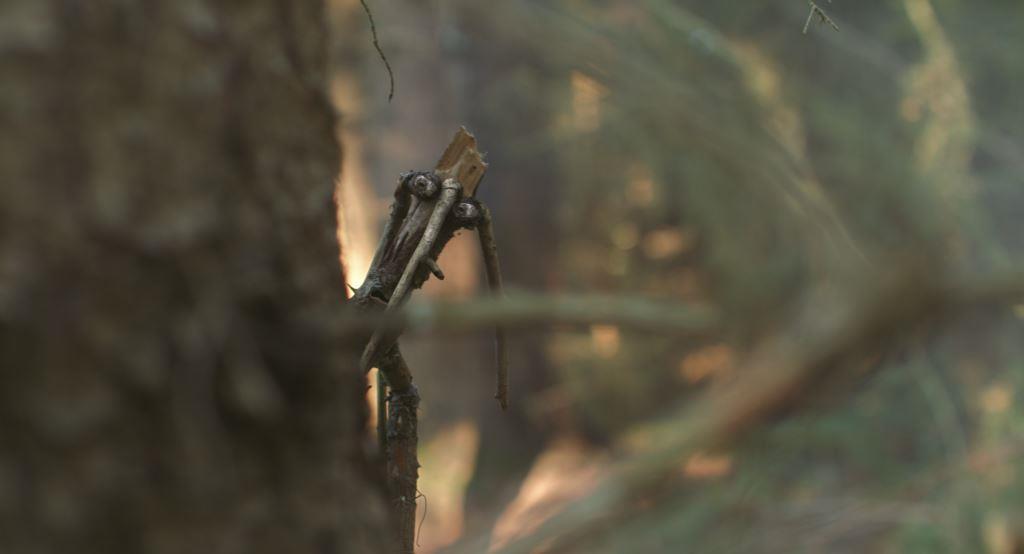 Mazel a tajemství lesa